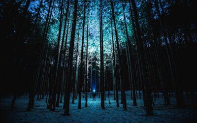 Ledlenser – lygter og lamper til outdoor eventyret